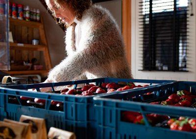 Aardbeien kopen